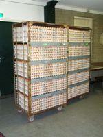 Kar met eieren
