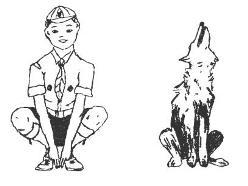 Welp en een wolf